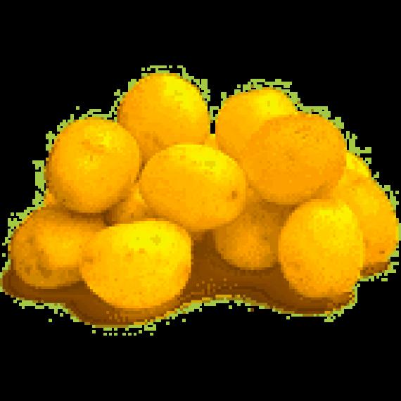 Batata Bolinha Orgânica (500g)
