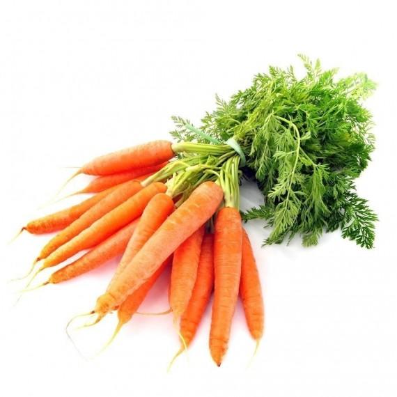 Cenoura Orgânica (maço)